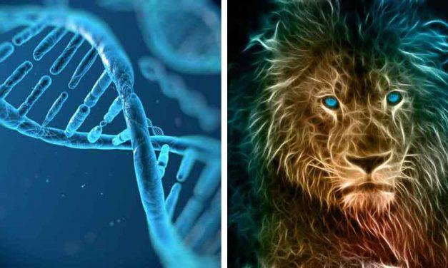 A natural history of human thinking by Michael Thomasello 2014